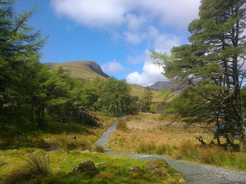 Lovely walkway between Rhyd Dhu and Beddgelert, Snowdonia