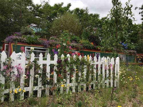 Birmingham flower show