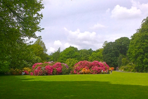 Garden at Kenwood