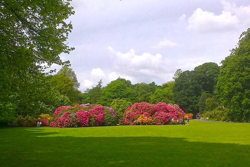 Garden at Kenwood