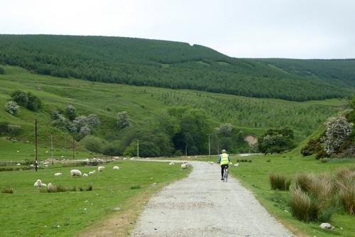 Arrisgill road