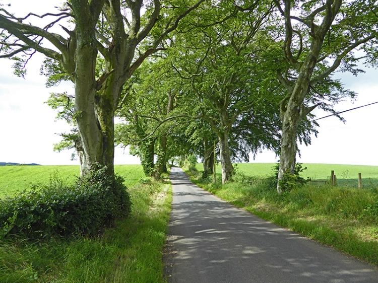 road to Ecclefechan