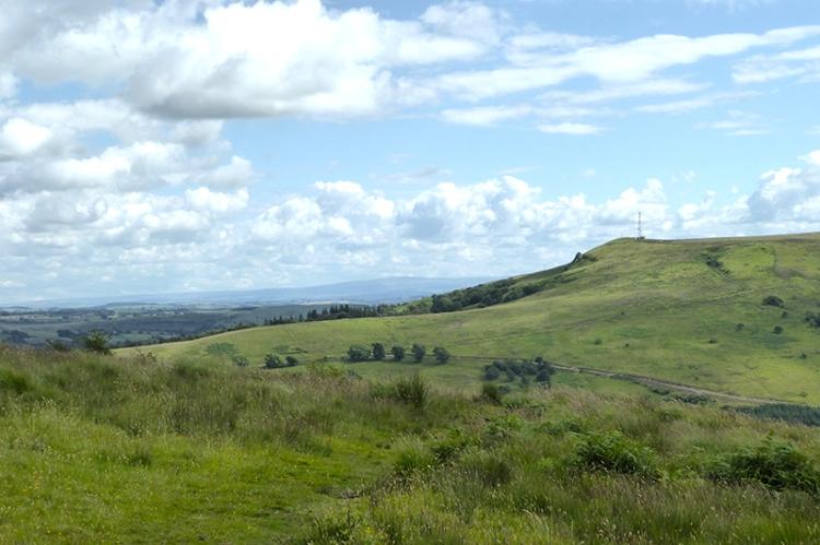 Meikleholm Hill and warbla