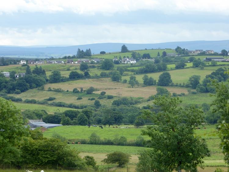 Lyne valley