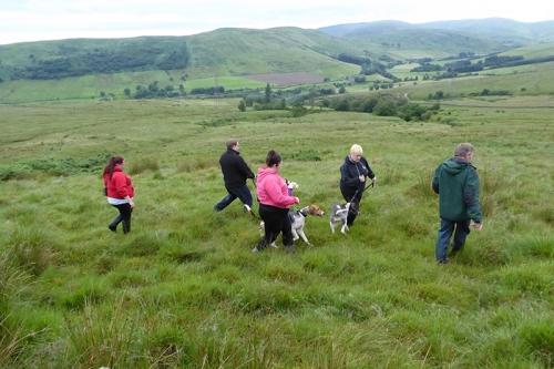 CR 2106 hound trail
