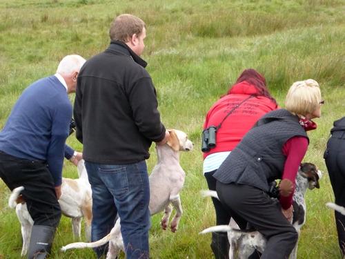 CR 2016 hound trail