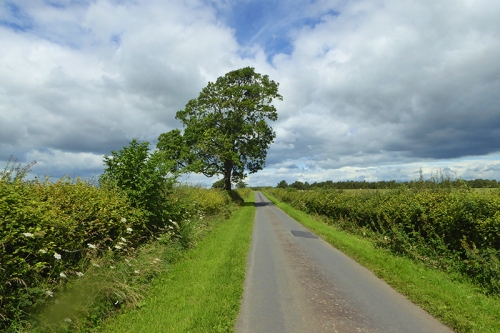 The road to Chapelknowe