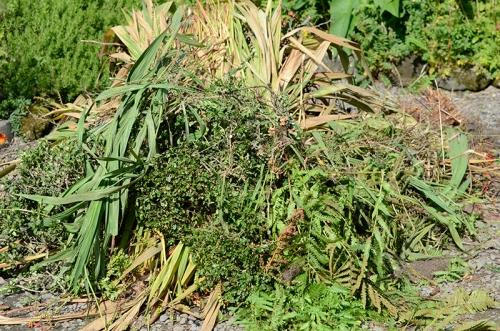 plant heap