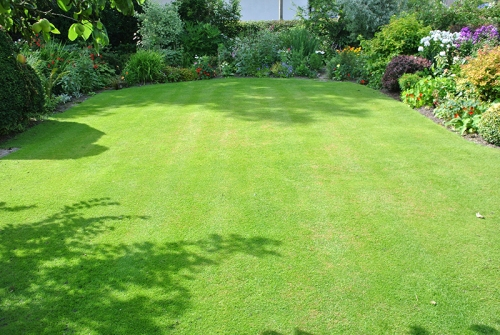 middle lawn