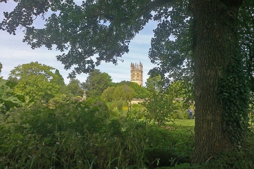 View of Magdalen College from the gardens