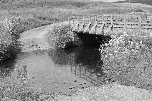 Bridge at Cooms