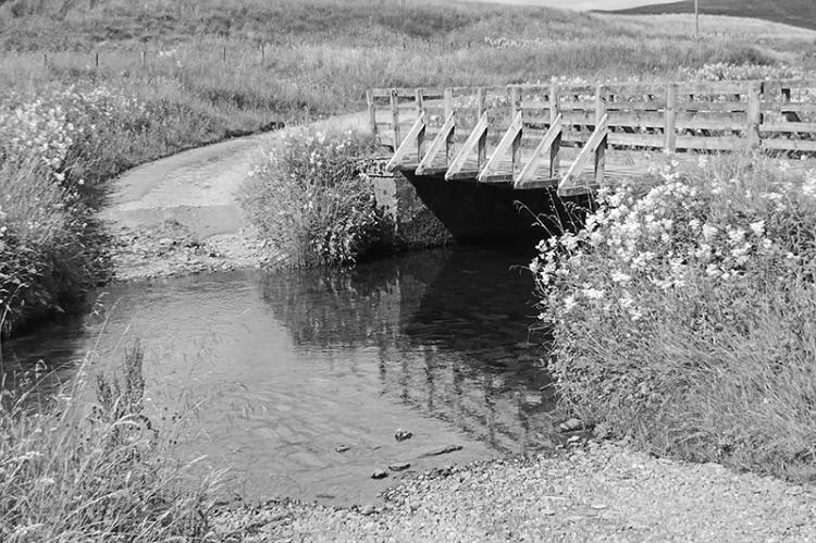 Bridge at Cooms