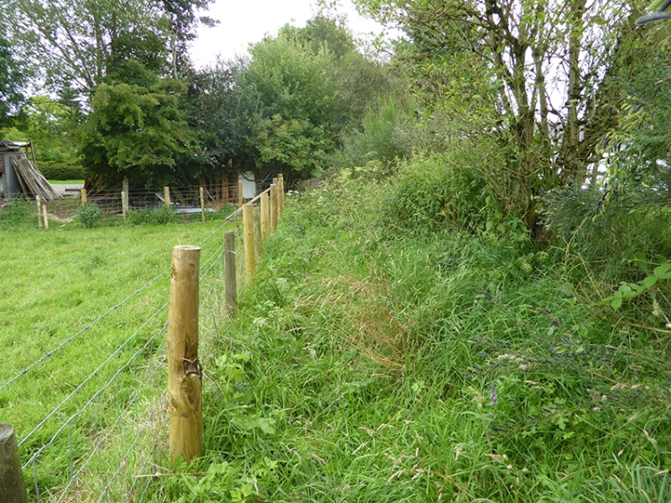 Scots' Dike path