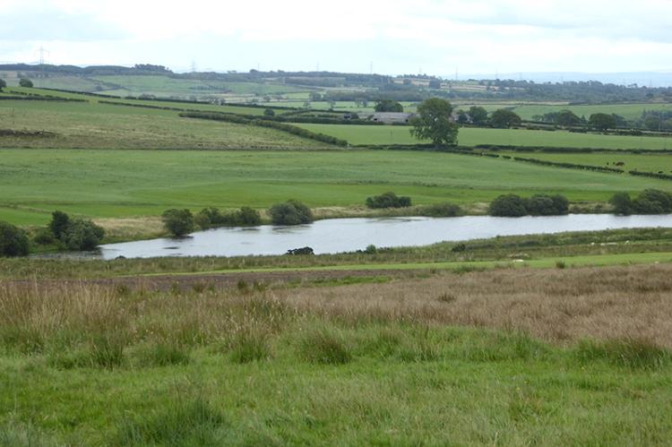 A pretty reservoir at Purdomstone