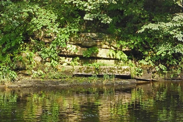 River Esk strata