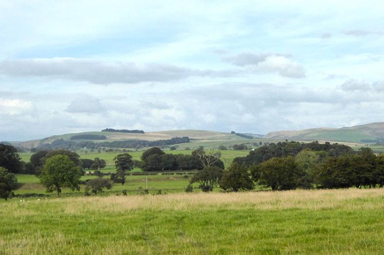 Gair view