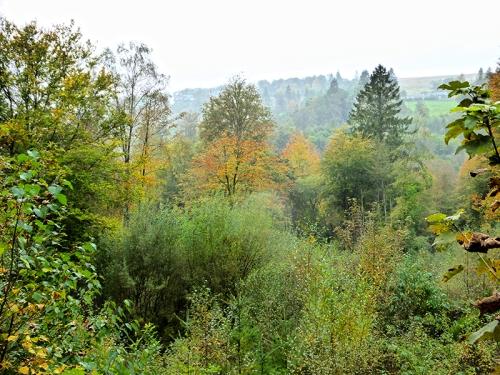 autumn colour Broomholm