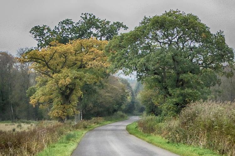 Sprinkell road