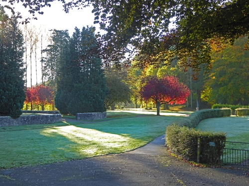 Buccleuch park in autumn