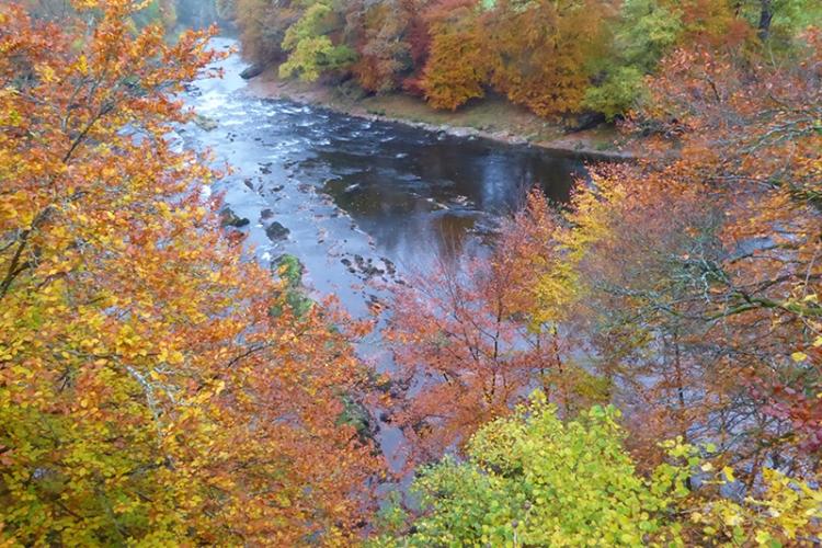 River at Byreburn