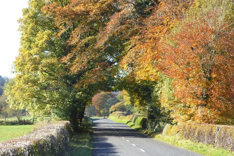 road from Ecclefechan