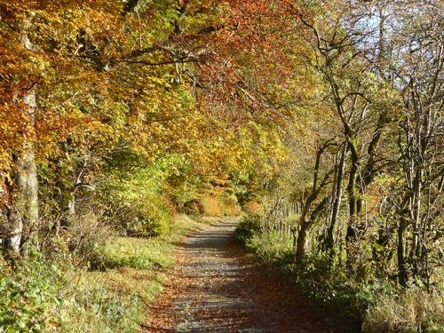Stubholm road