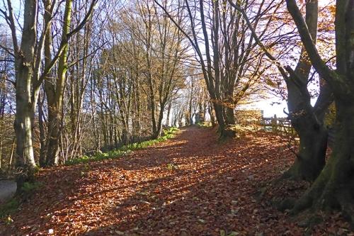 Stubholm track