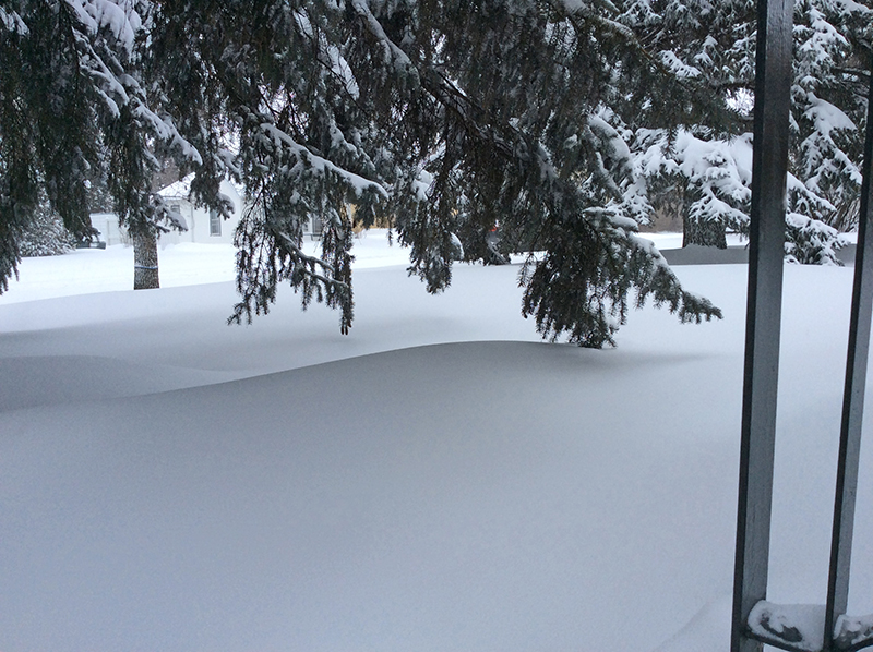 Canadian snow