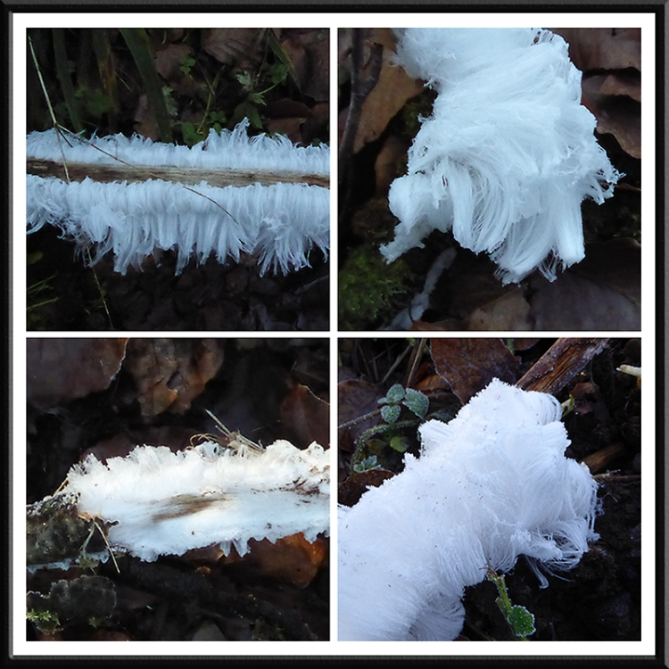 ice hair at Byreburn