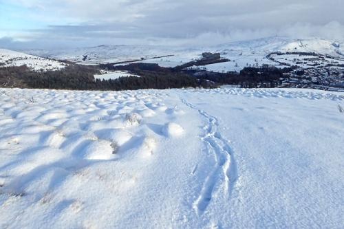 Meikleholm in snow