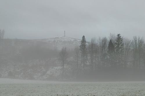 Murtholm mist