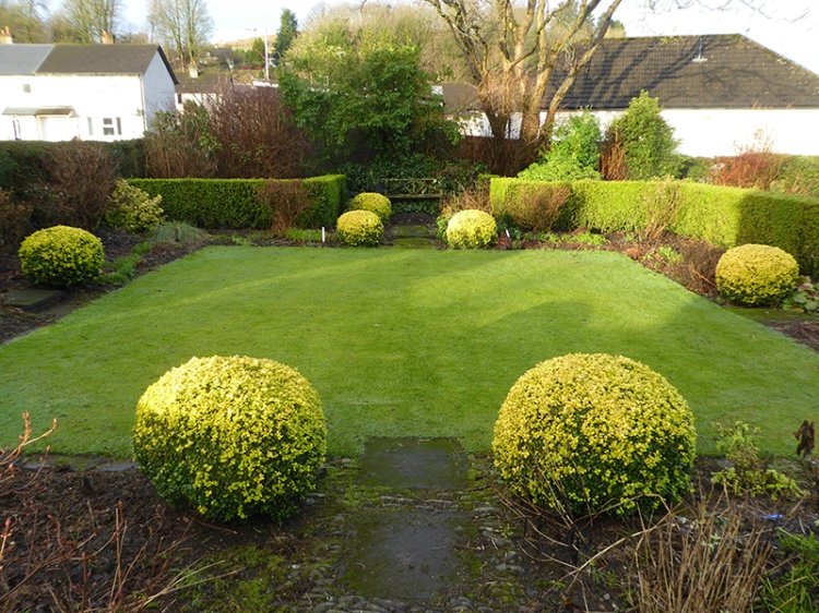 front lawn in January