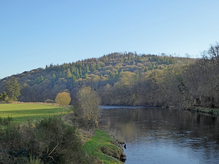 View from the bridge at Hoddom