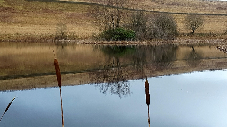 Arkleton Loch
