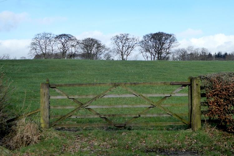 Eaglesfield gate