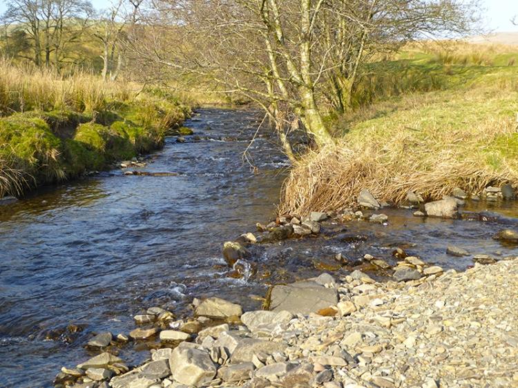 Logan Water and Glencorf Burn