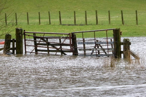 flooded gate