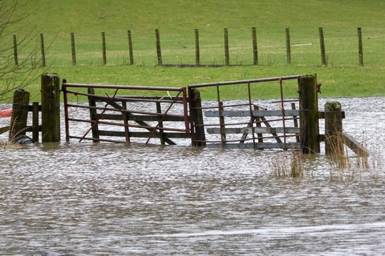 flooded gate