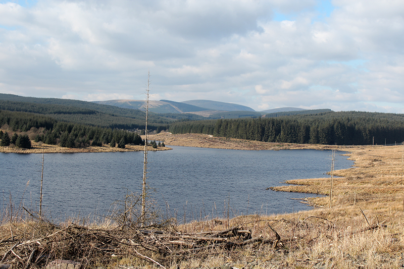 Black Esk reservoir