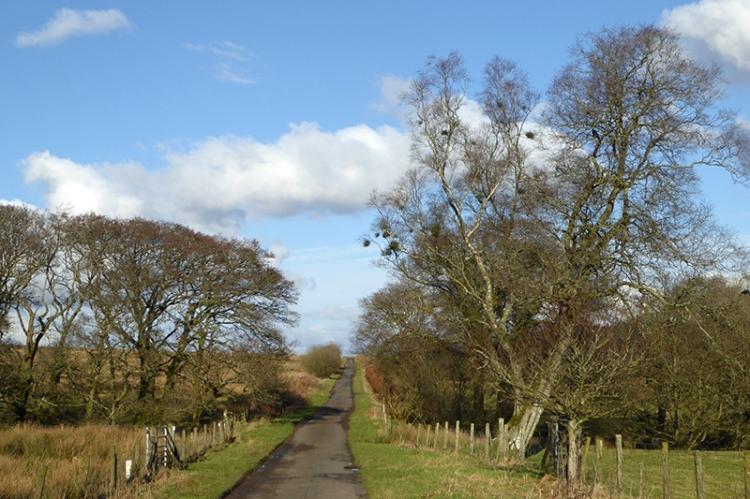 Barngliesh road