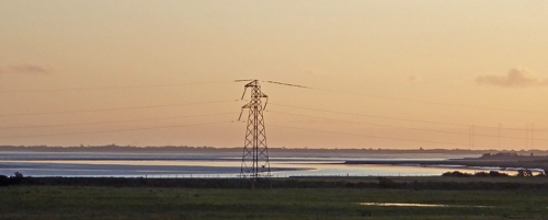 pylon with starlings