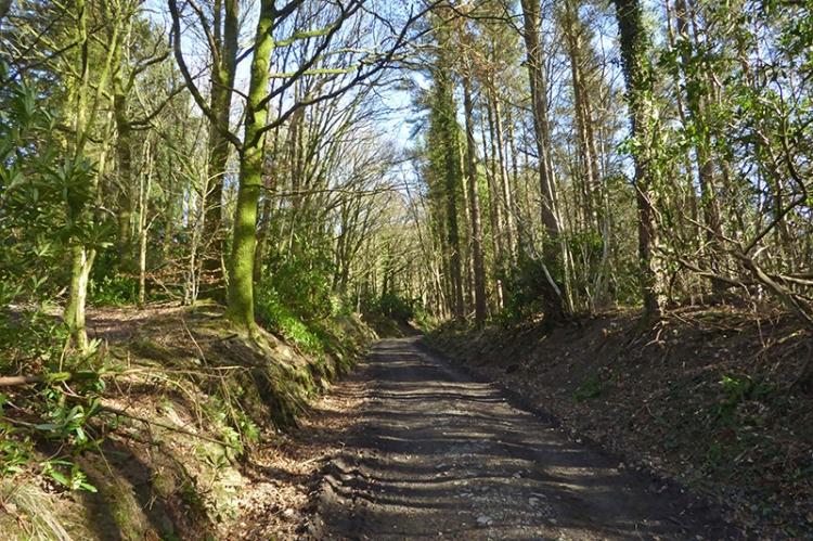 Potholm track