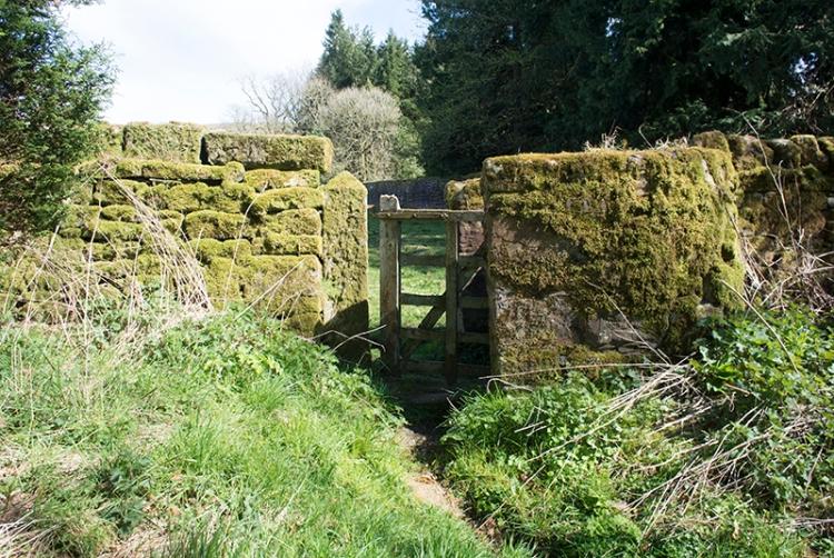 Lamb Hill gate