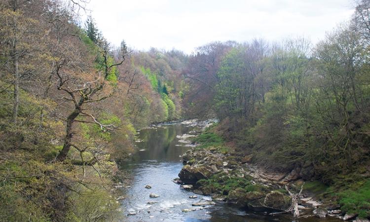 River Esk at Hollows