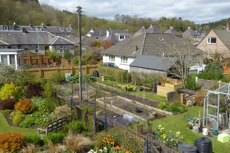 The vegetable garden and the compost bins