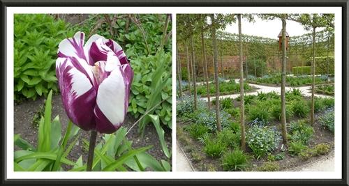 alnwick garden walled garden
