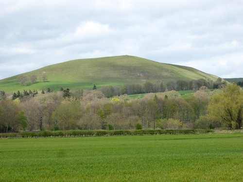 minto hill