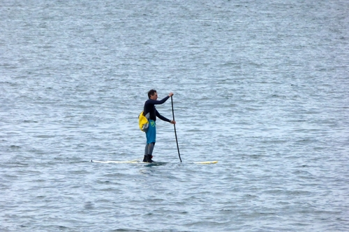 standing paddler