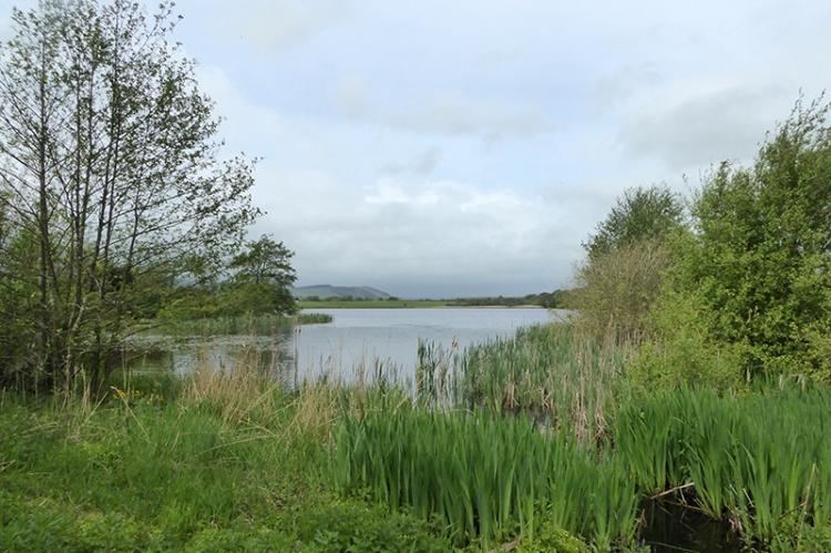 Mill Loch Lochmaben
