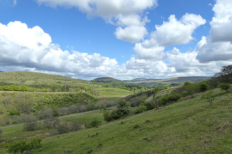 Wauchope valley